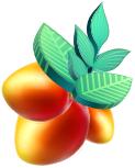brandripe-pricing-orange